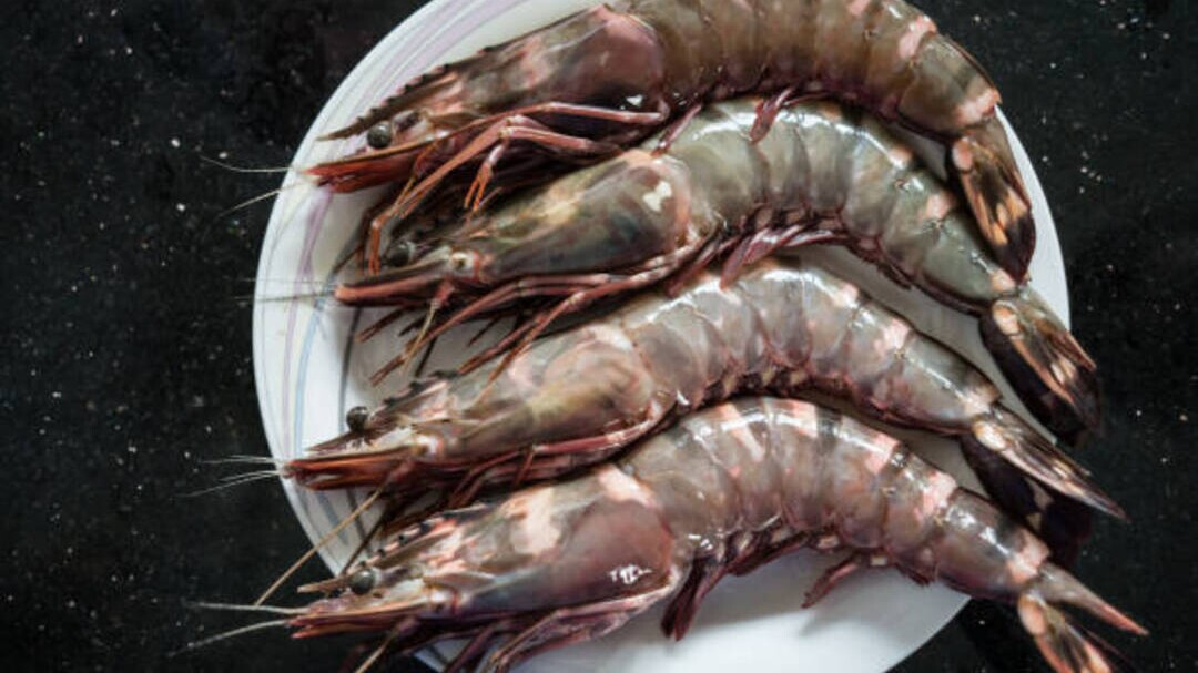 What S The Difference Between Shrimp And Prawns Southern Living