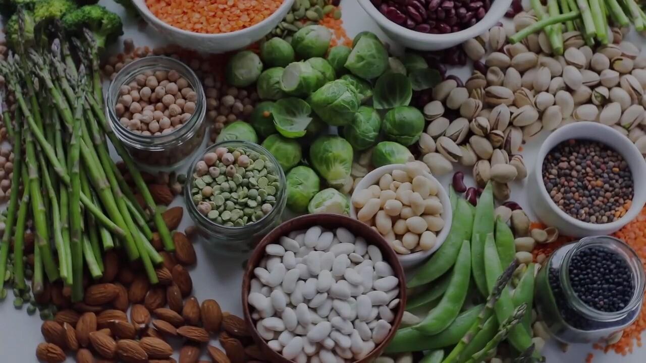 protein centered vegetarian diet