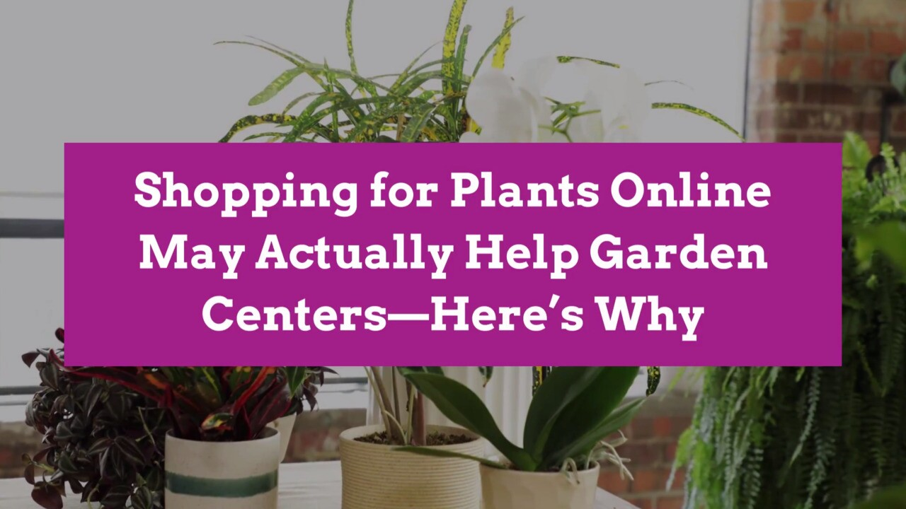 Online Plant Retailers Drive Business To Traditional Garden Centers Better Homes Gardens