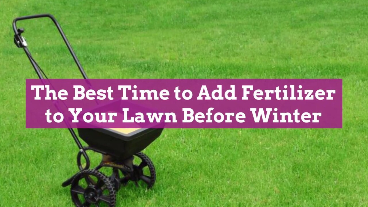 When Should I Ly A Winter Fertilizer To My Lawn Better Homes Gardens