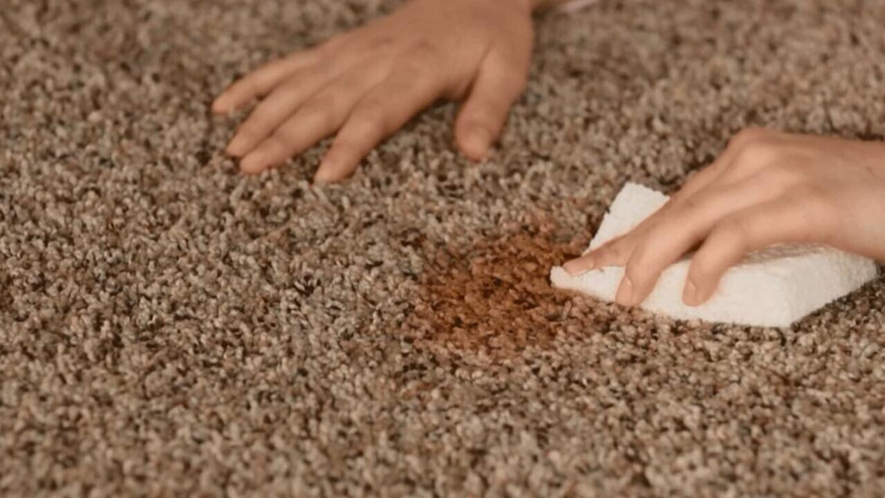 How To Clean Carpet Like A Pro Better Homes Gardens