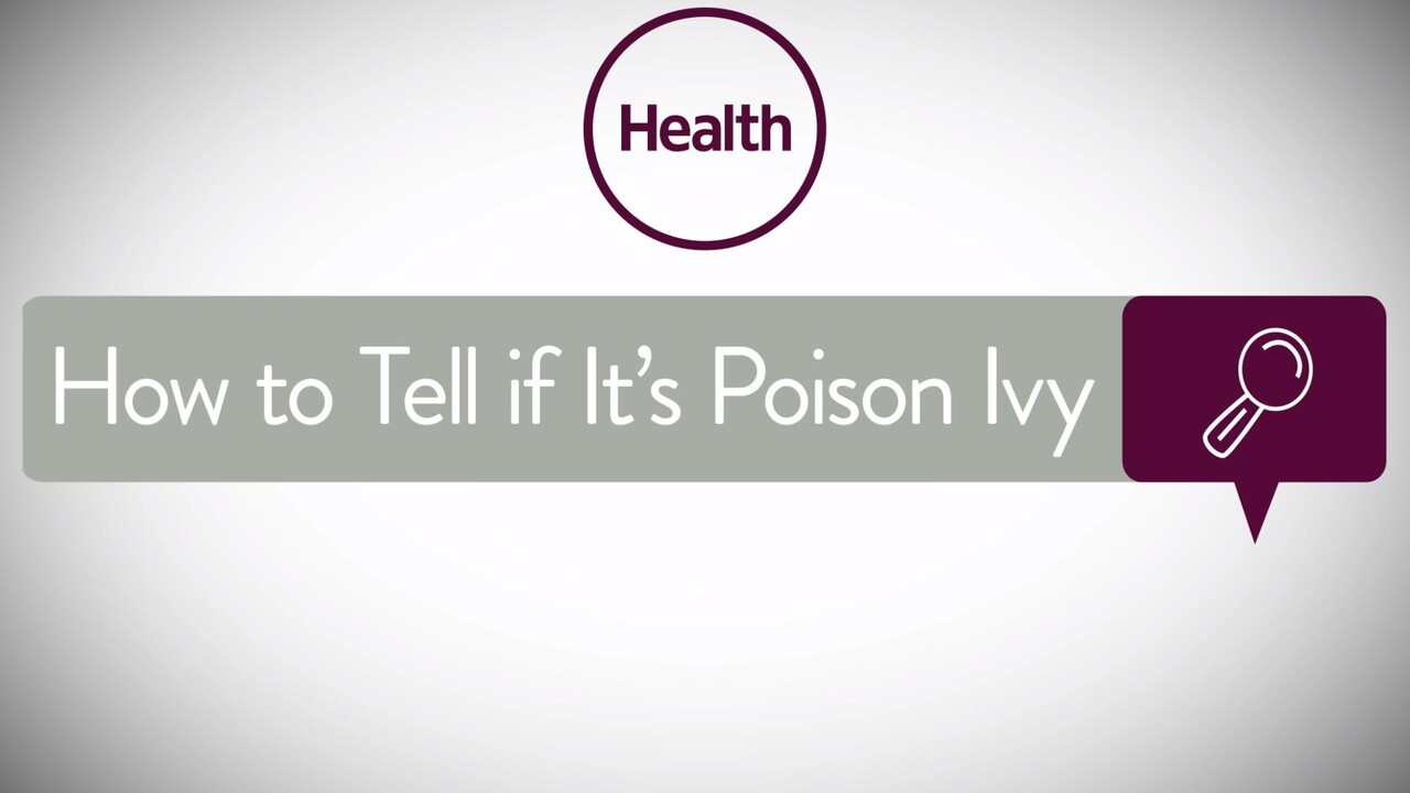 Poison Ivy: Symptoms, Rash, Treatment - Health