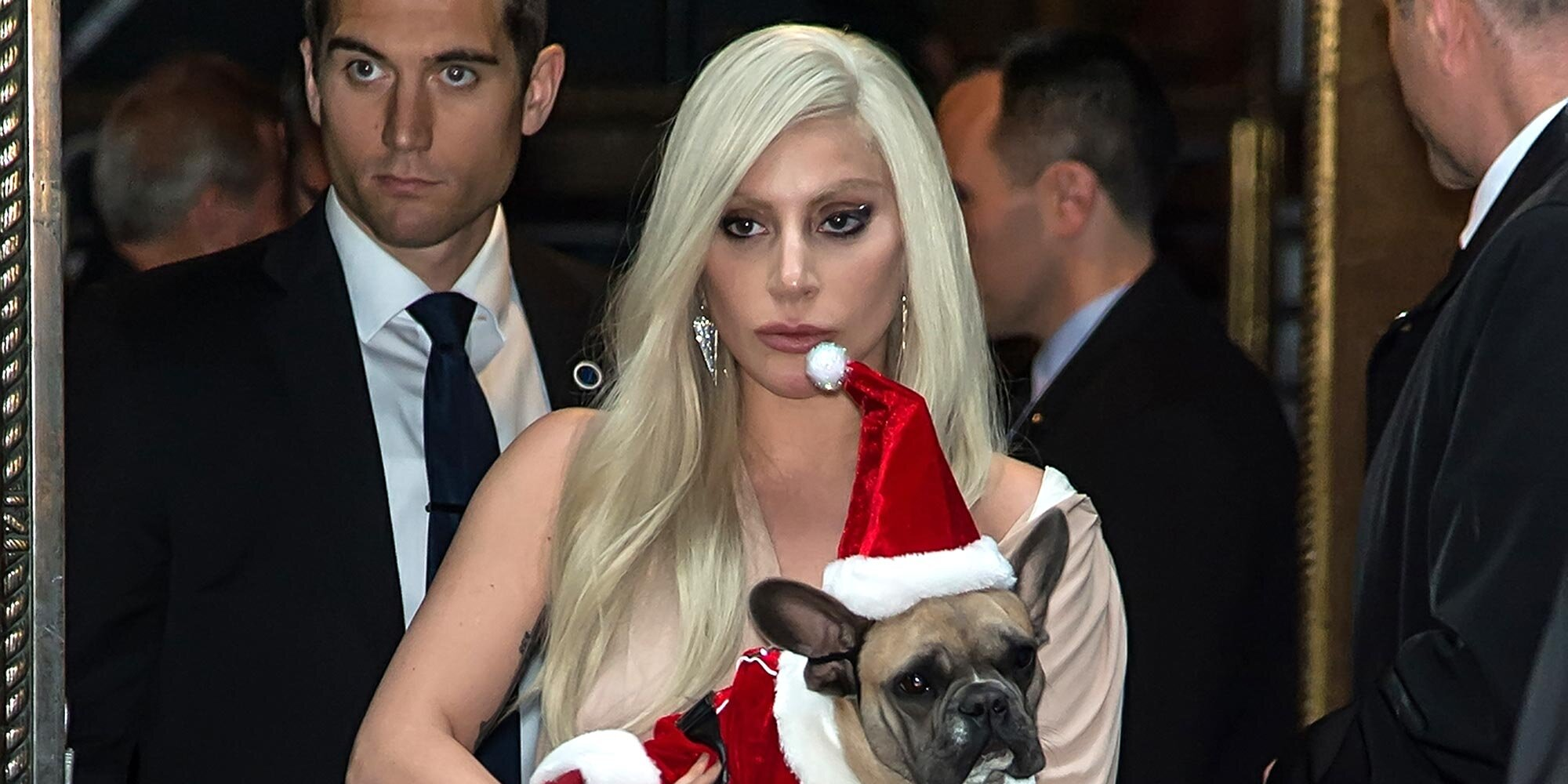 Lady Gaga's stolen dogs found alive and returned safely to police.jpg