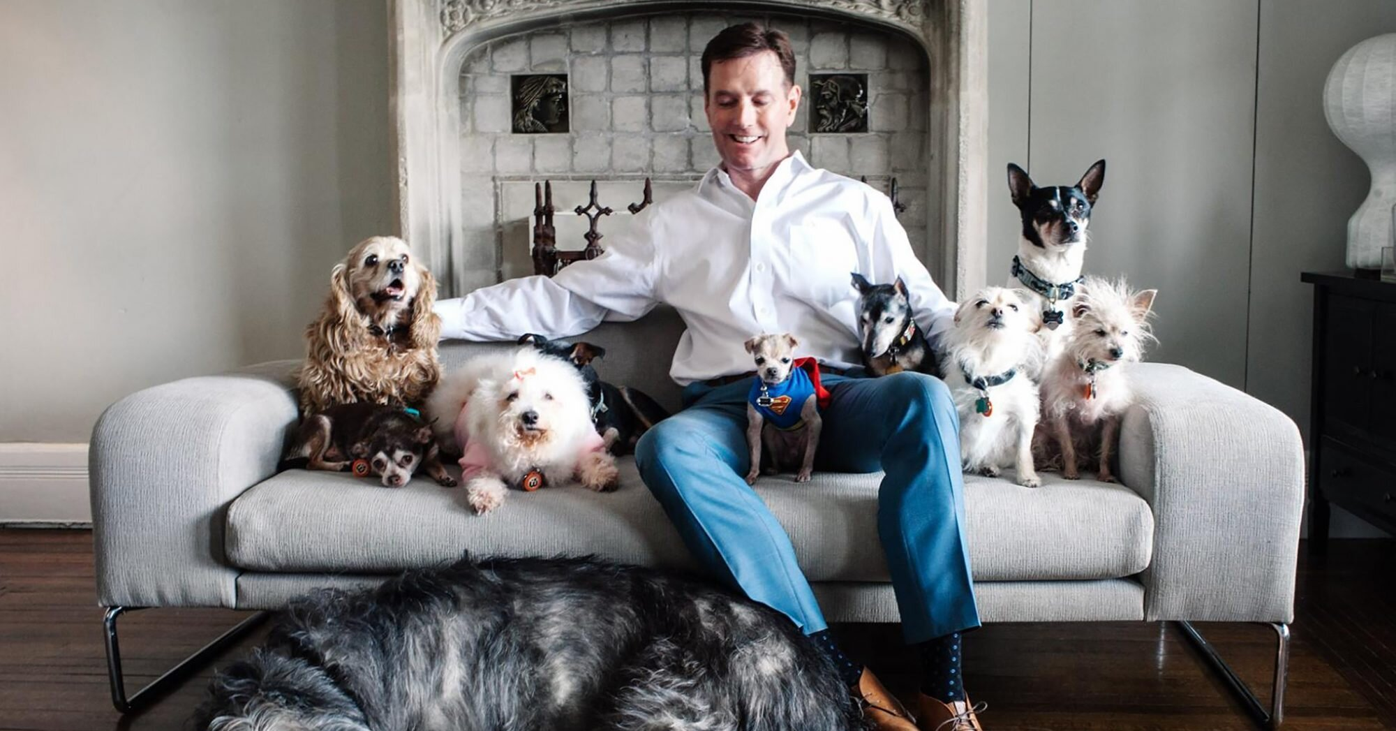 This Accountant Takes in Dogs No One Else Wants