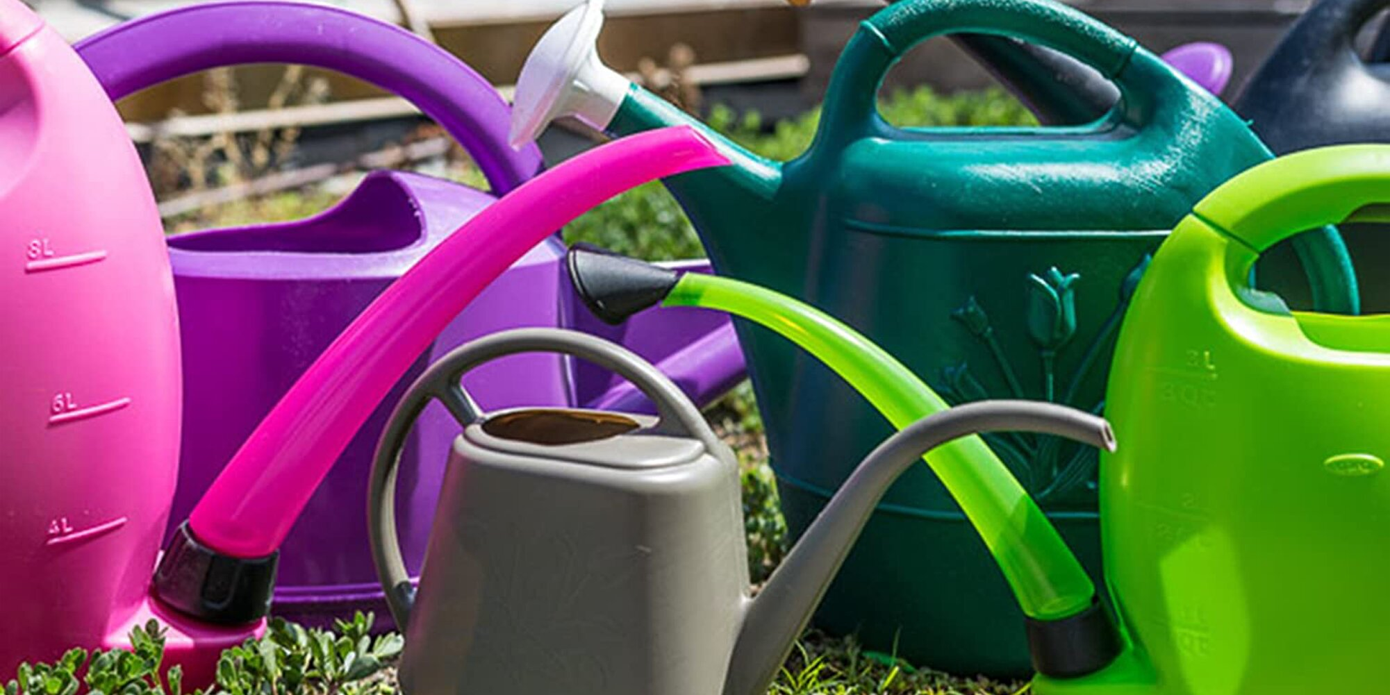 The Tools, Essentials, and Must-Haves Every Gardener Should Own