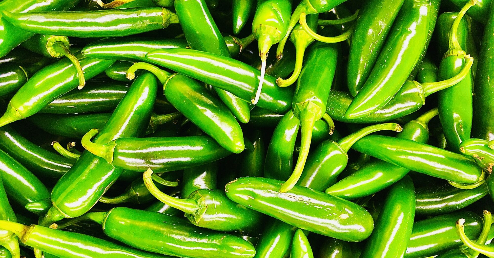 How To Pickle Jalapeño Peppers