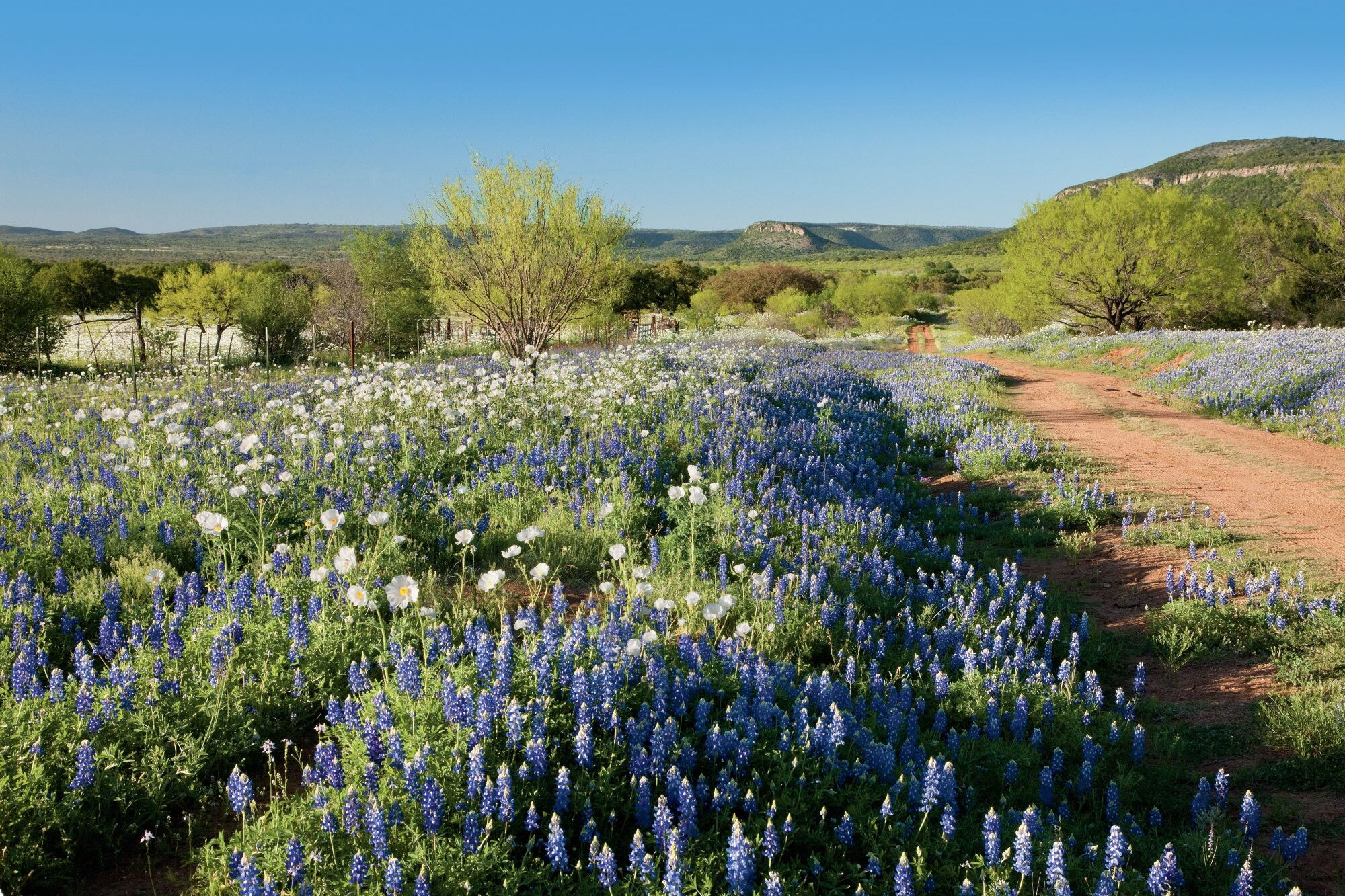 16 Adventures In Texas Hidden Hill Country Southern Living