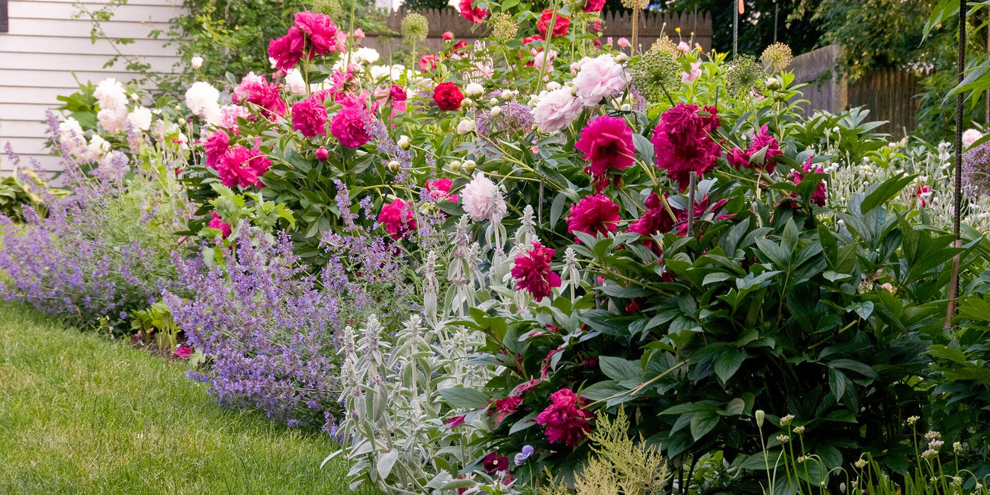 How To Grow A Flower Garden World Of Flowering Plants