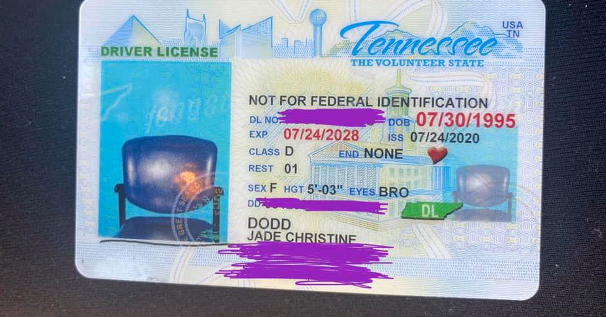 Tenn. Woman Renews Driver's License – Only to Receive ID with Photo of Empty Chair