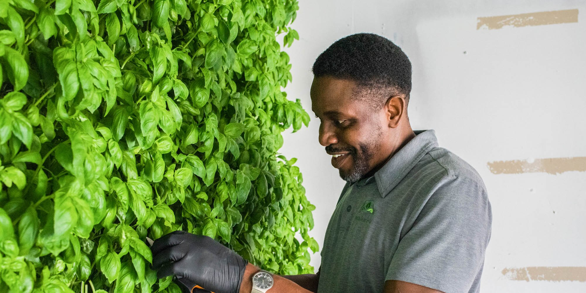 Greg Crafter Wants to Turn Your Walls Into Gardens