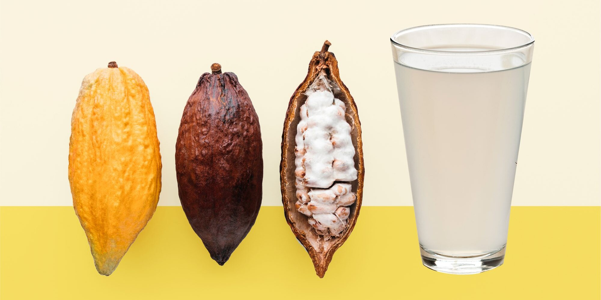 Cacao Water Is the Healthy, Refreshing Beverage Everyone Is Buzzing About