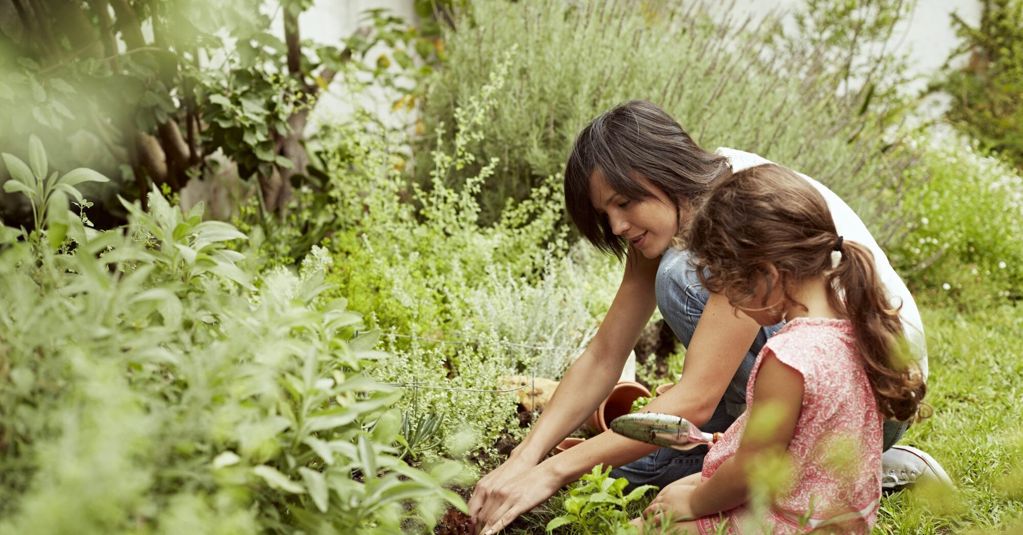 How to Create a Garden First Aid Kit