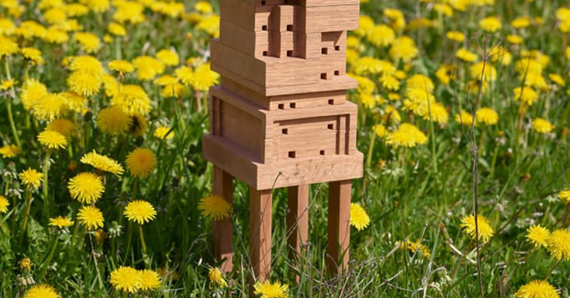 Help Bees Thrive in Your Backyard with This Free DIY Bee Home Design Tool