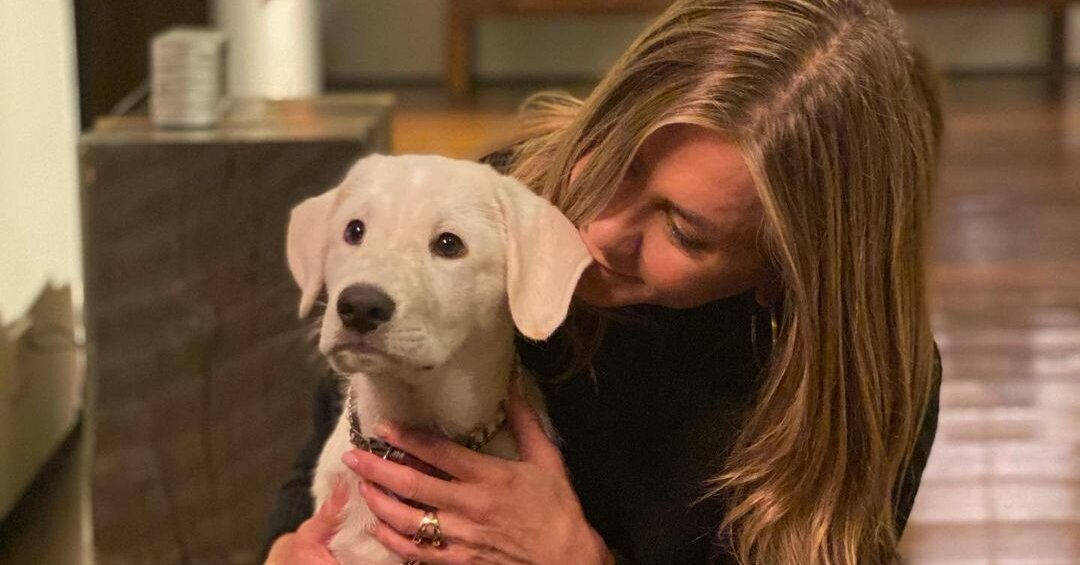 Jennifer Aniston Poses with Her Adorable Puppy Lord Chesterfield for Thanksgiving: 'We're Grateful'