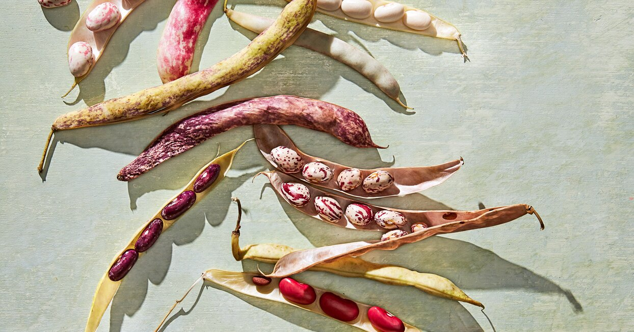Fresh Shelling Beans Are Our Food Editor's Favorite—Here's Why