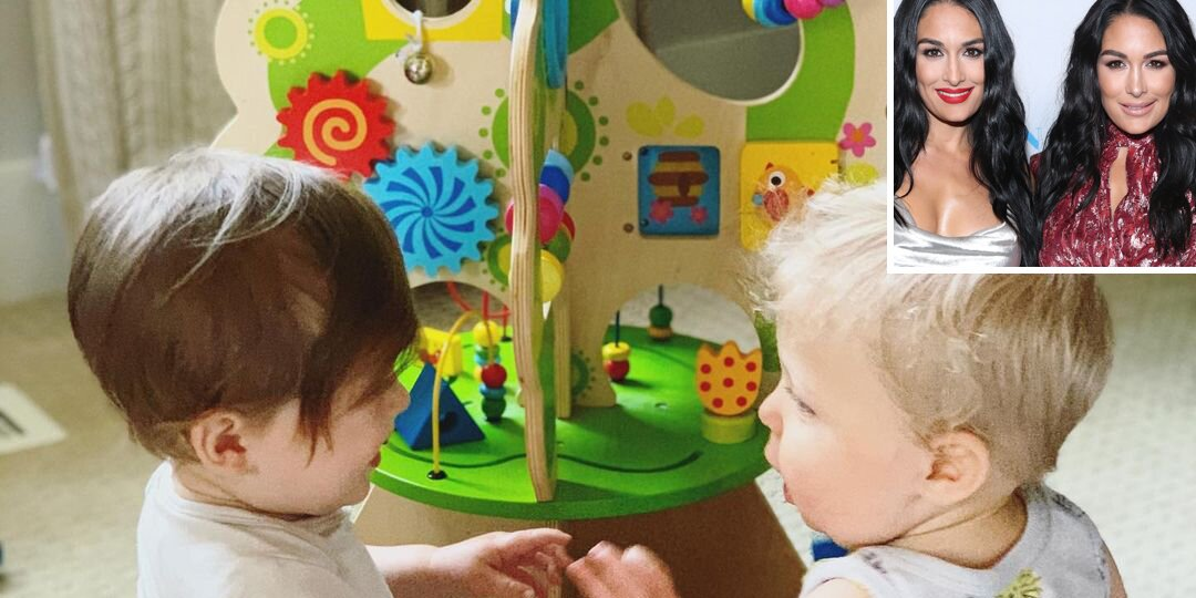 Brie Bella Shares Sweet Snap of Son Buddy Playing with Sister Nikki's Son Matteo.jpg