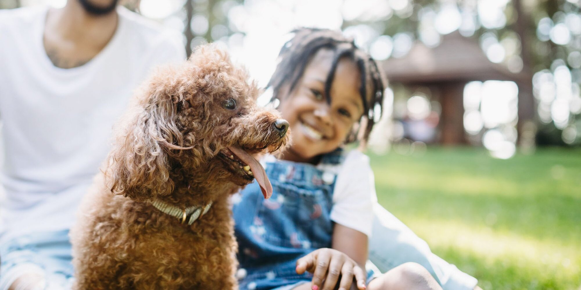 Adopting a Pet? Here's All You Should Know