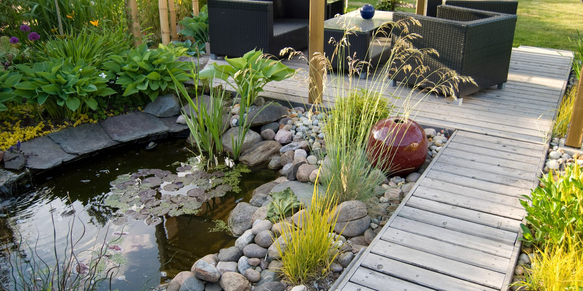 How to Build a Pond in Your Backyard
