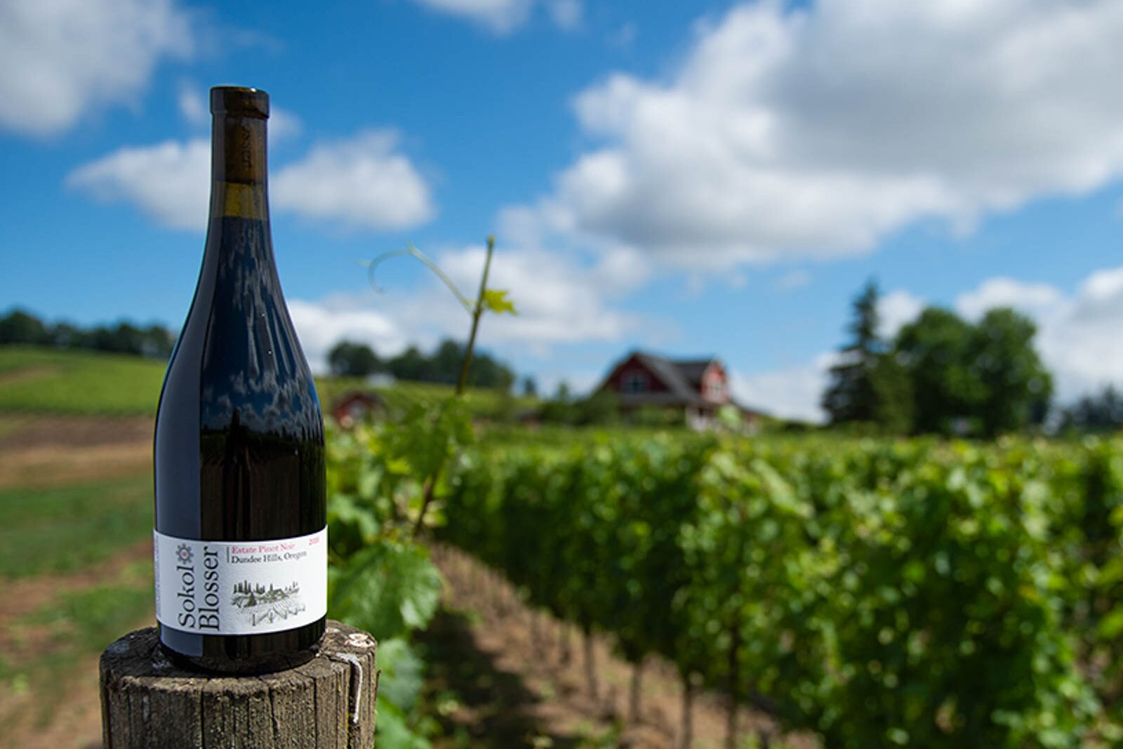 31 Wineries to Visit in Washington and Oregon | Food & Wine