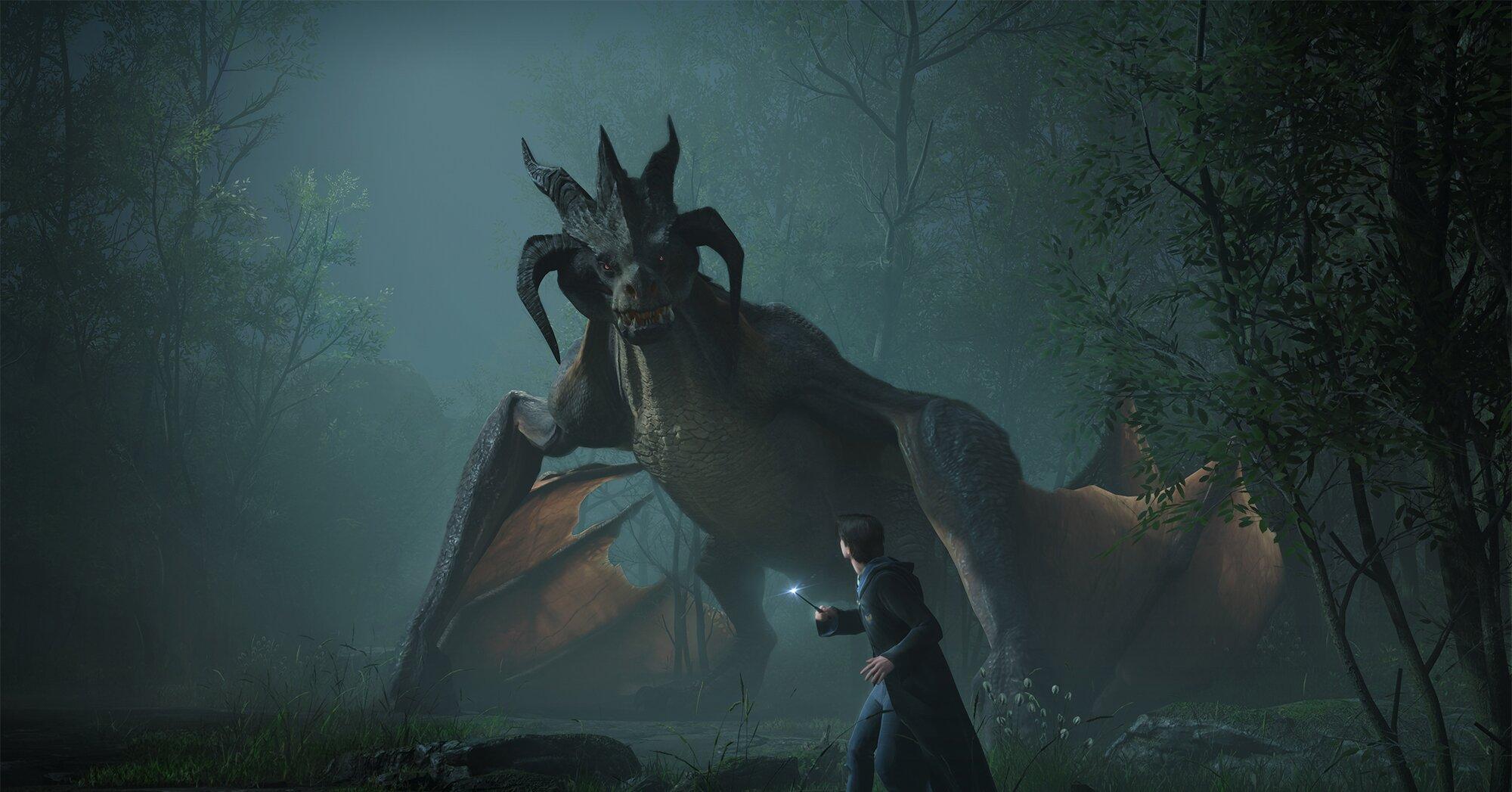 Dragon Screenshot.'