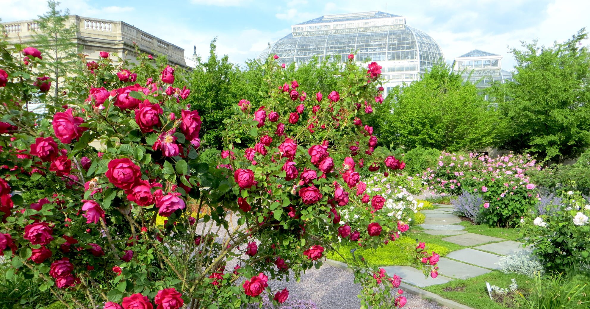 Take a Virtual Stroll Through Some of the Nation's Best Botanical Gardens