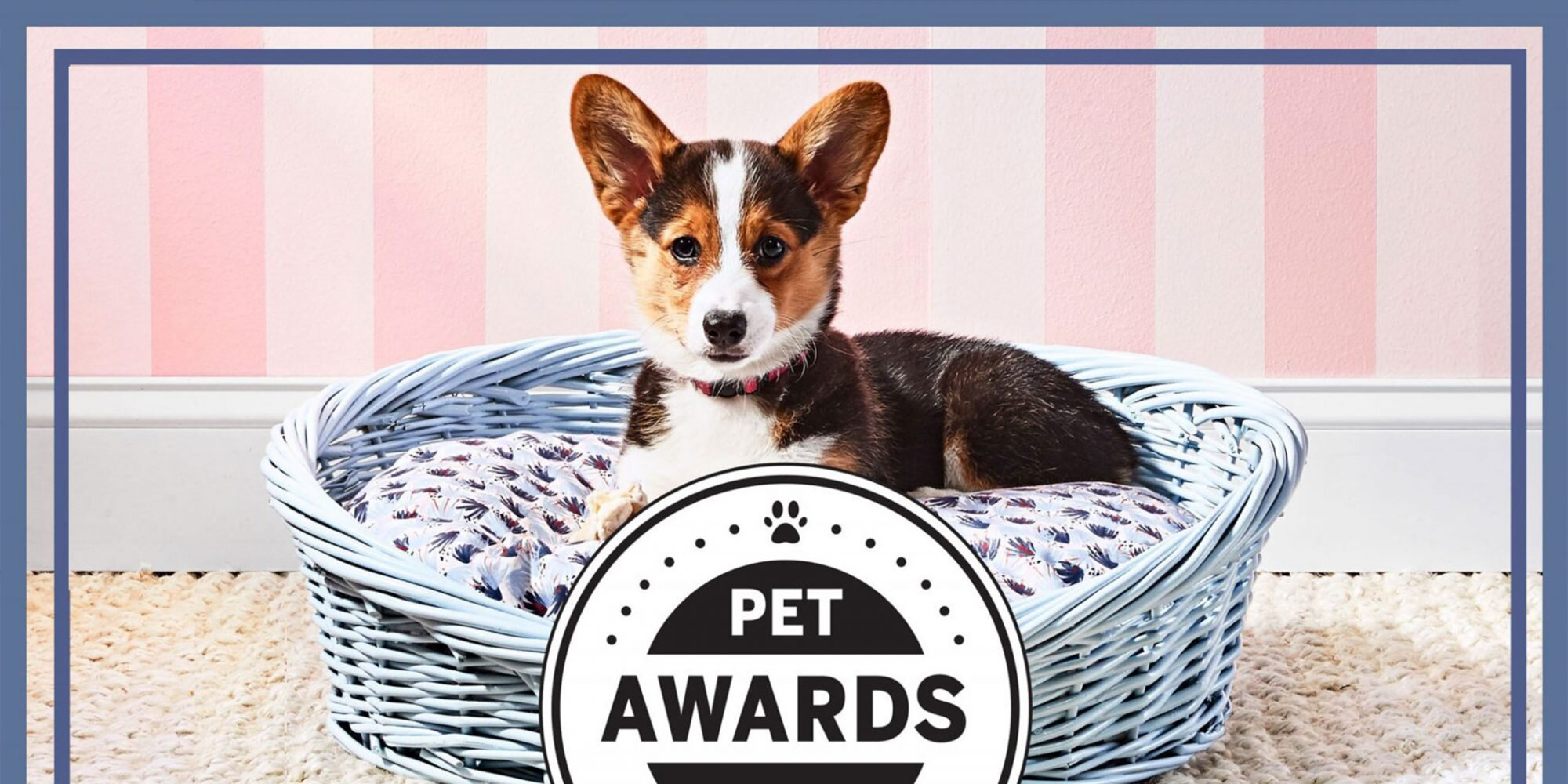 Southern Living Just Announced the Winners of Their 2021 Pet Awards and We'll Take One of Everything Please