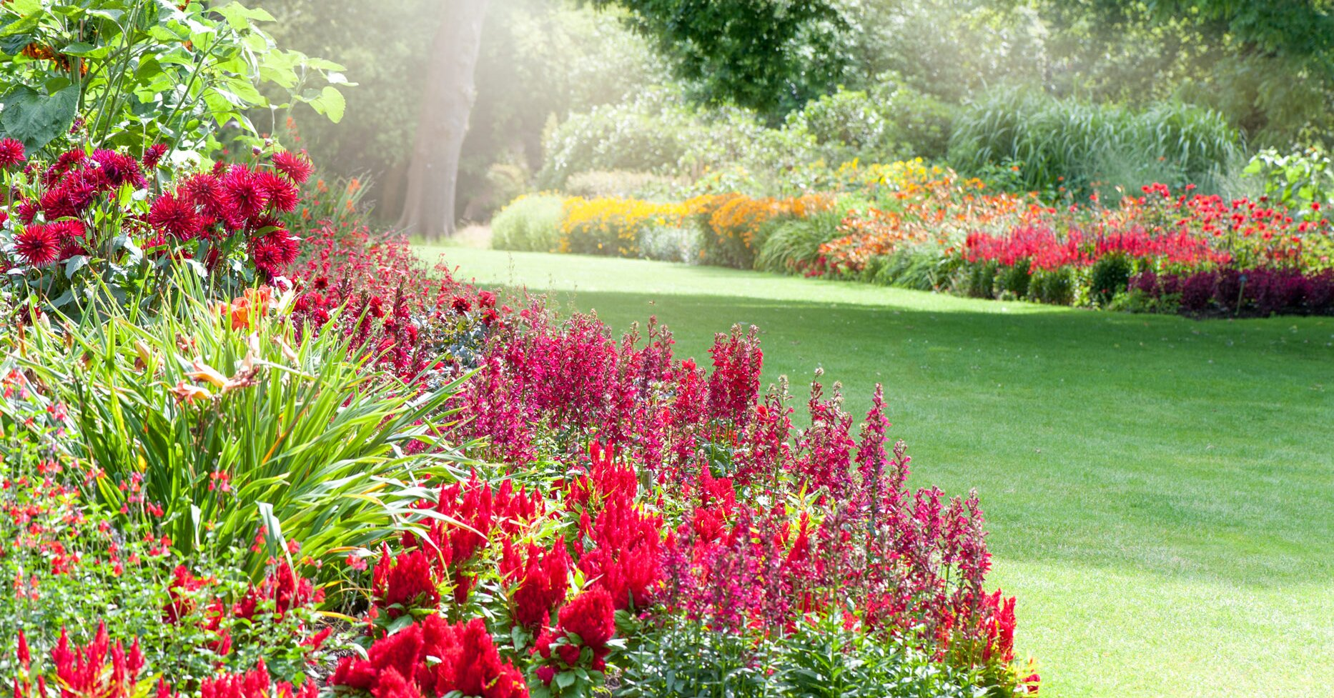 How to Choose the Right Landscaper