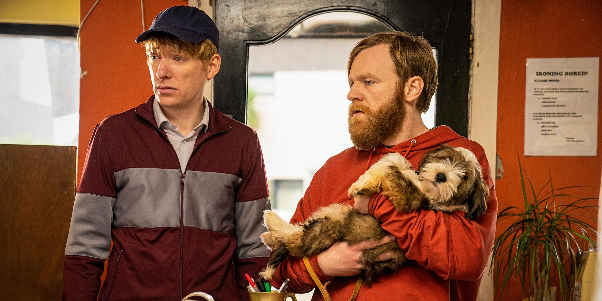 Why Brian and Domhnall Gleeson got childish for the sitcom Frank of Ireland.jpg