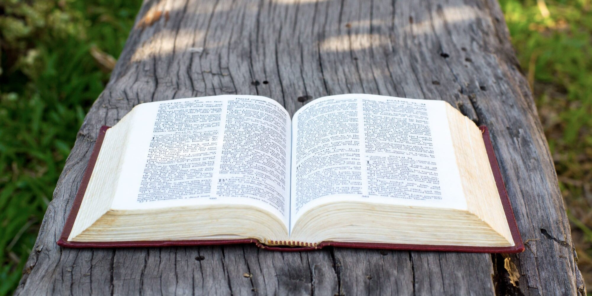 The Bible in a Year with Fr. Mike Schmitz Podcast Leads Listeners Through the Entire Book in 365 Days