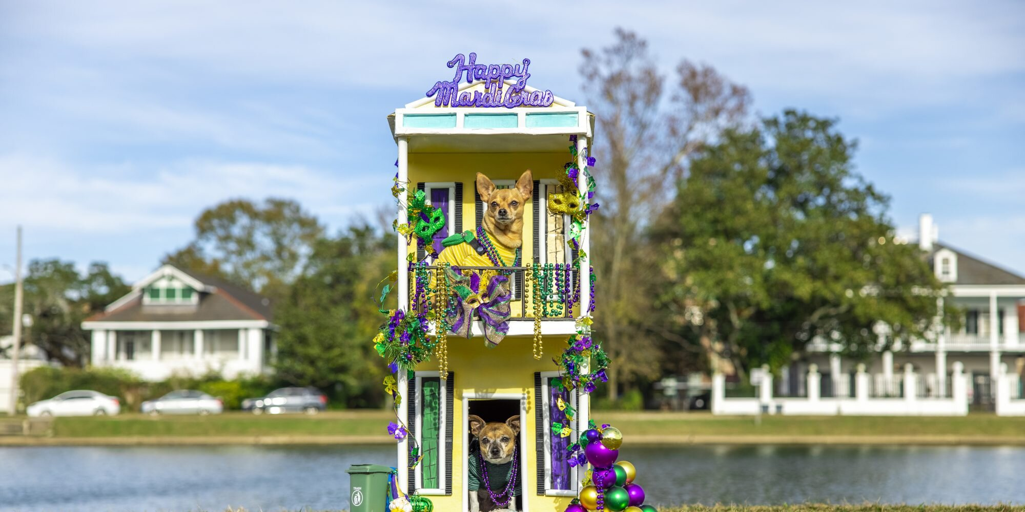 Dog House Floats Popping Up in New Orleans Area Amid Mardi Gras Cancelations