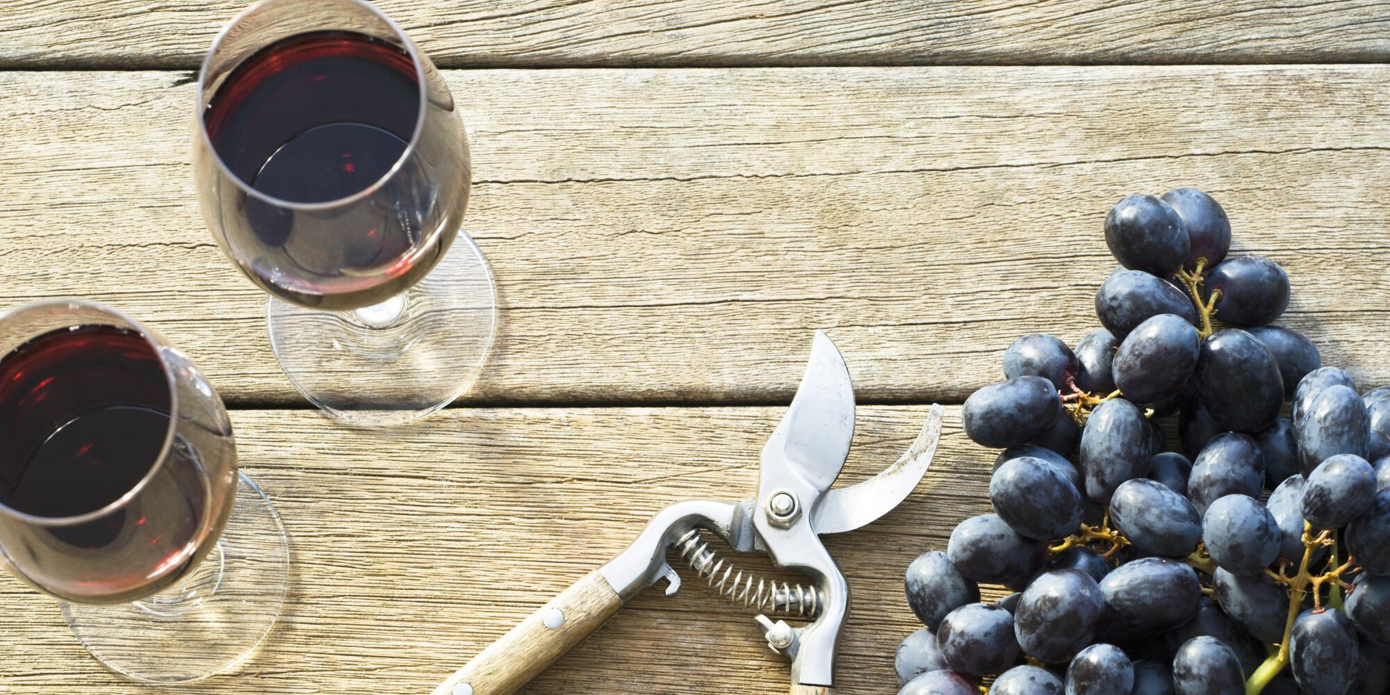 Why Natural Wine Isn't Always the Healthiest (or Tastiest) Option