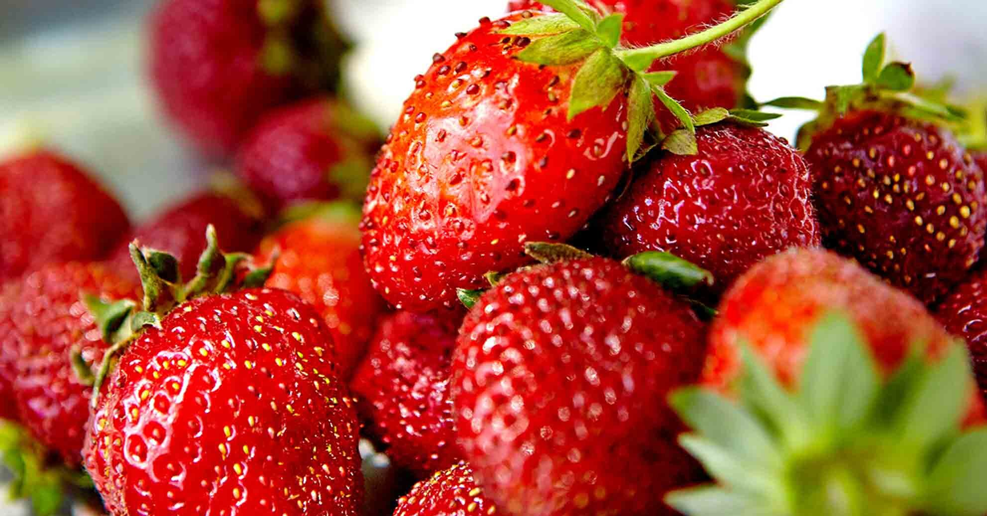 7 Cancer Fighting Foods To Start Eating More Of Today Better Homes Gardens
