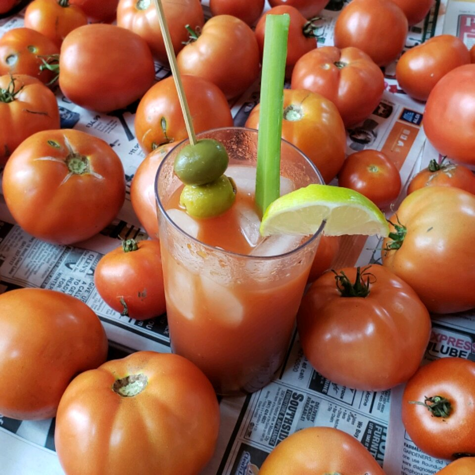 ripleys bloody mary mix for canning recipe