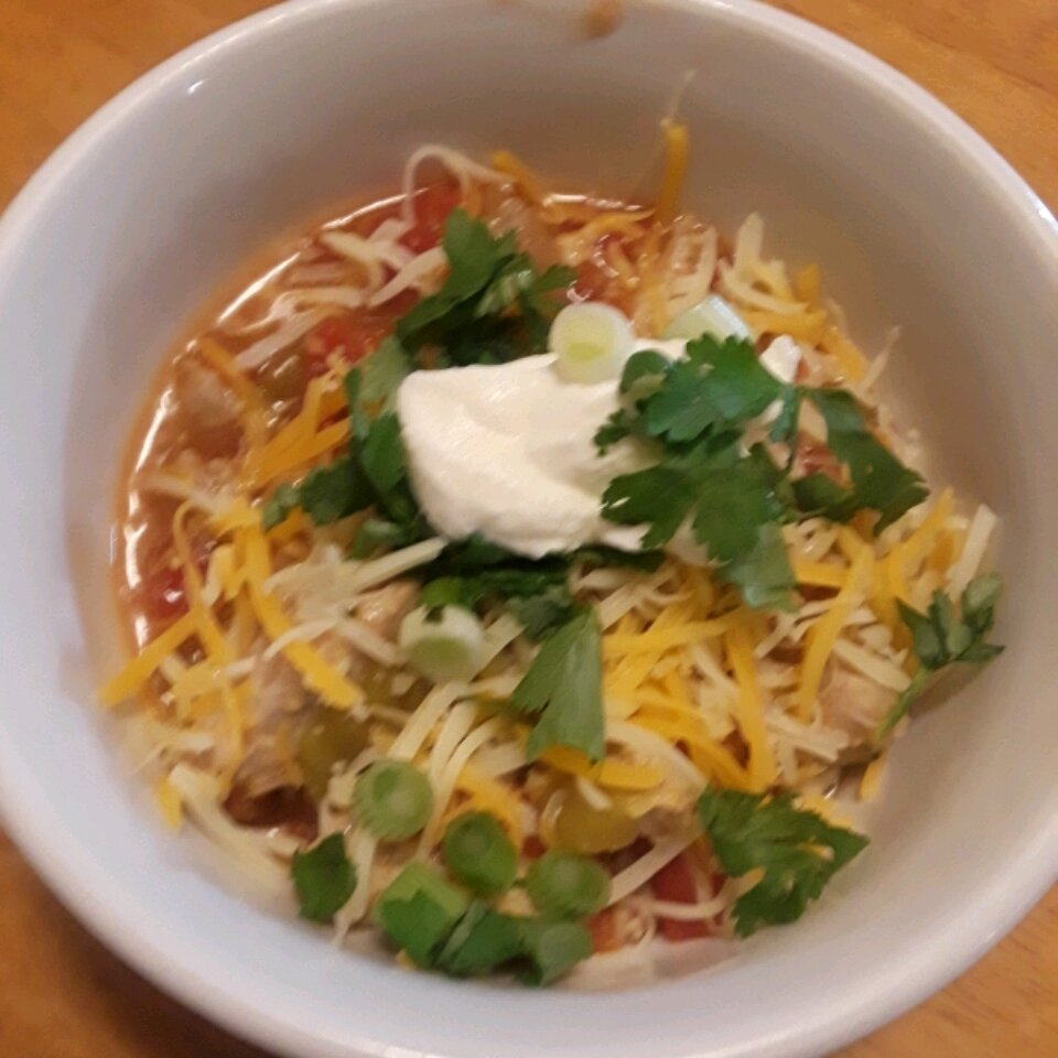 mexican pork and green chile stew recipe