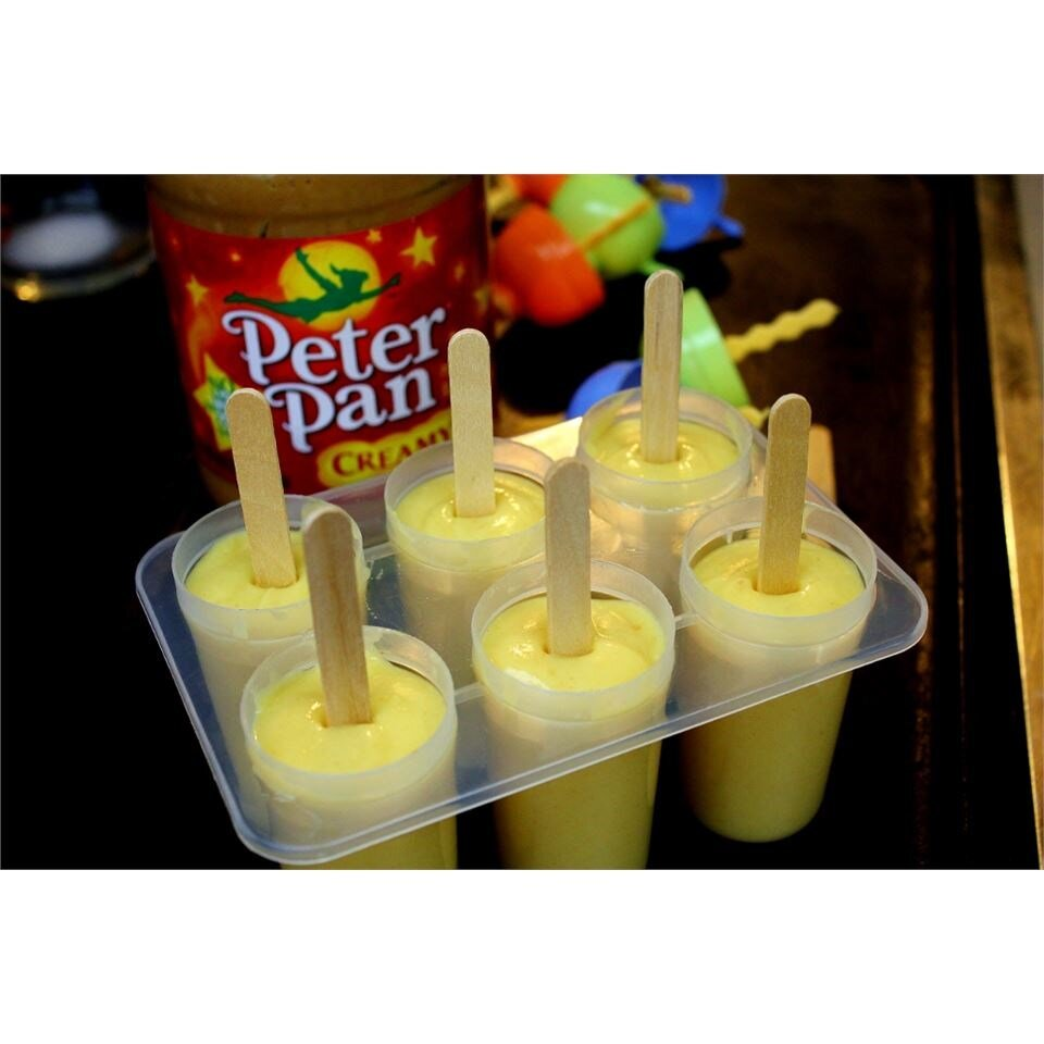 king of rock frozen pudding pops recipe