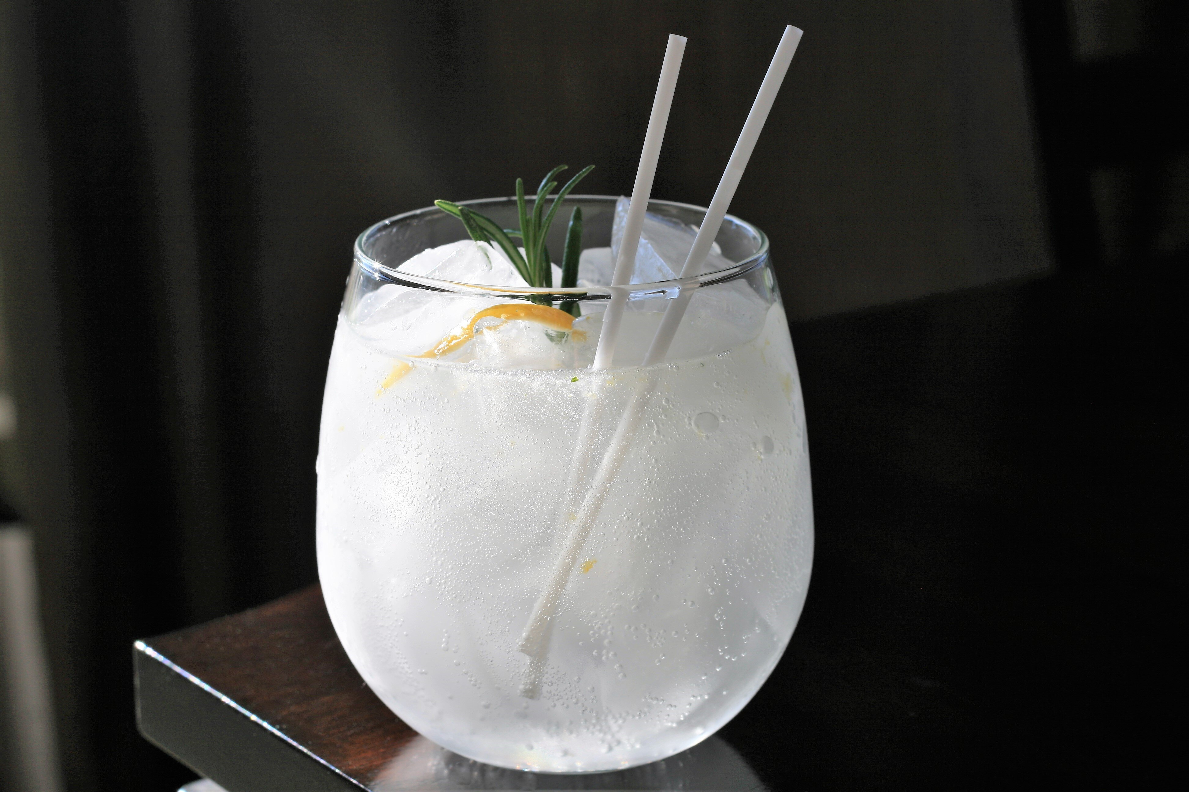 salty lemon gin and tonic recipe