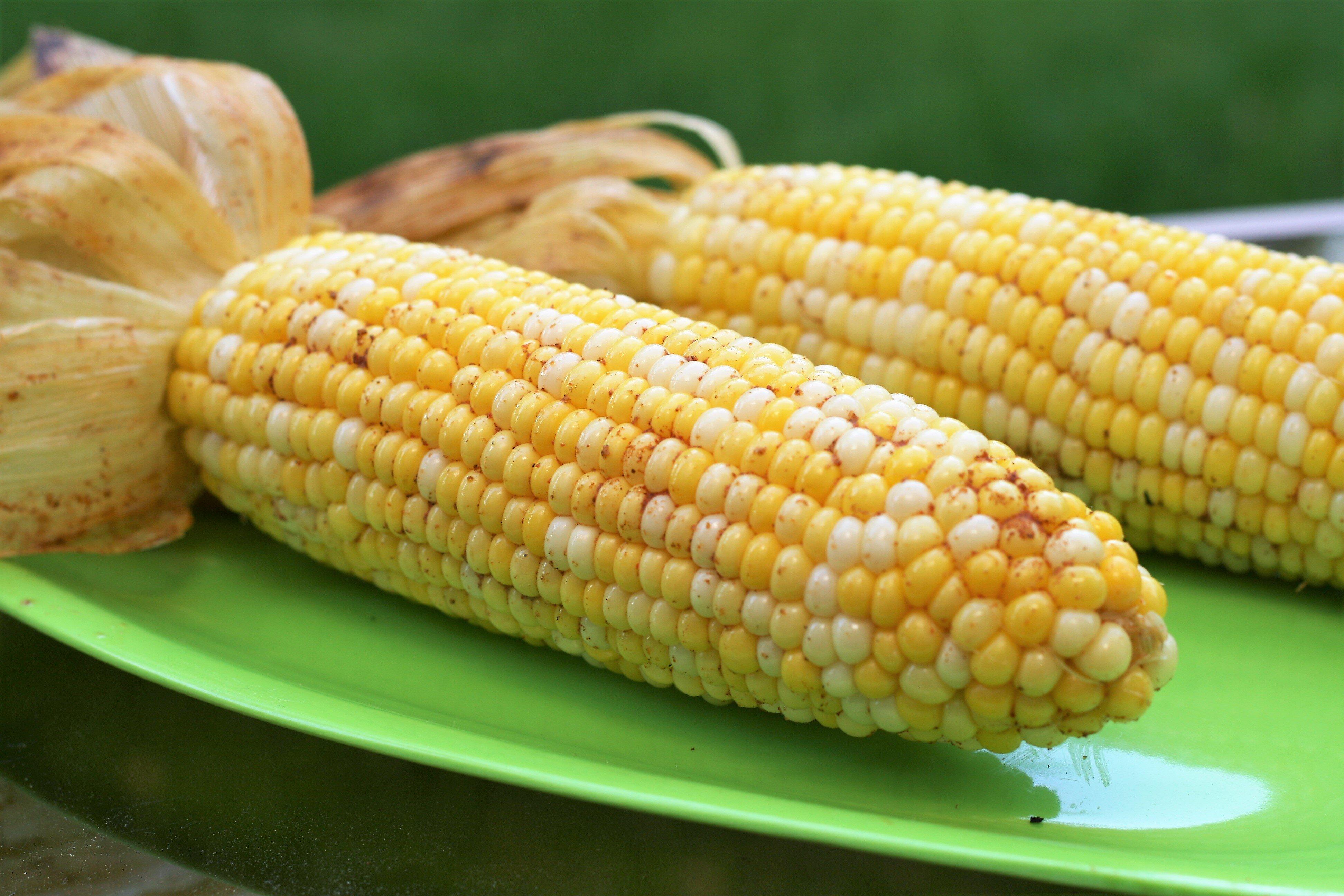 cajun grilled corn recipe
