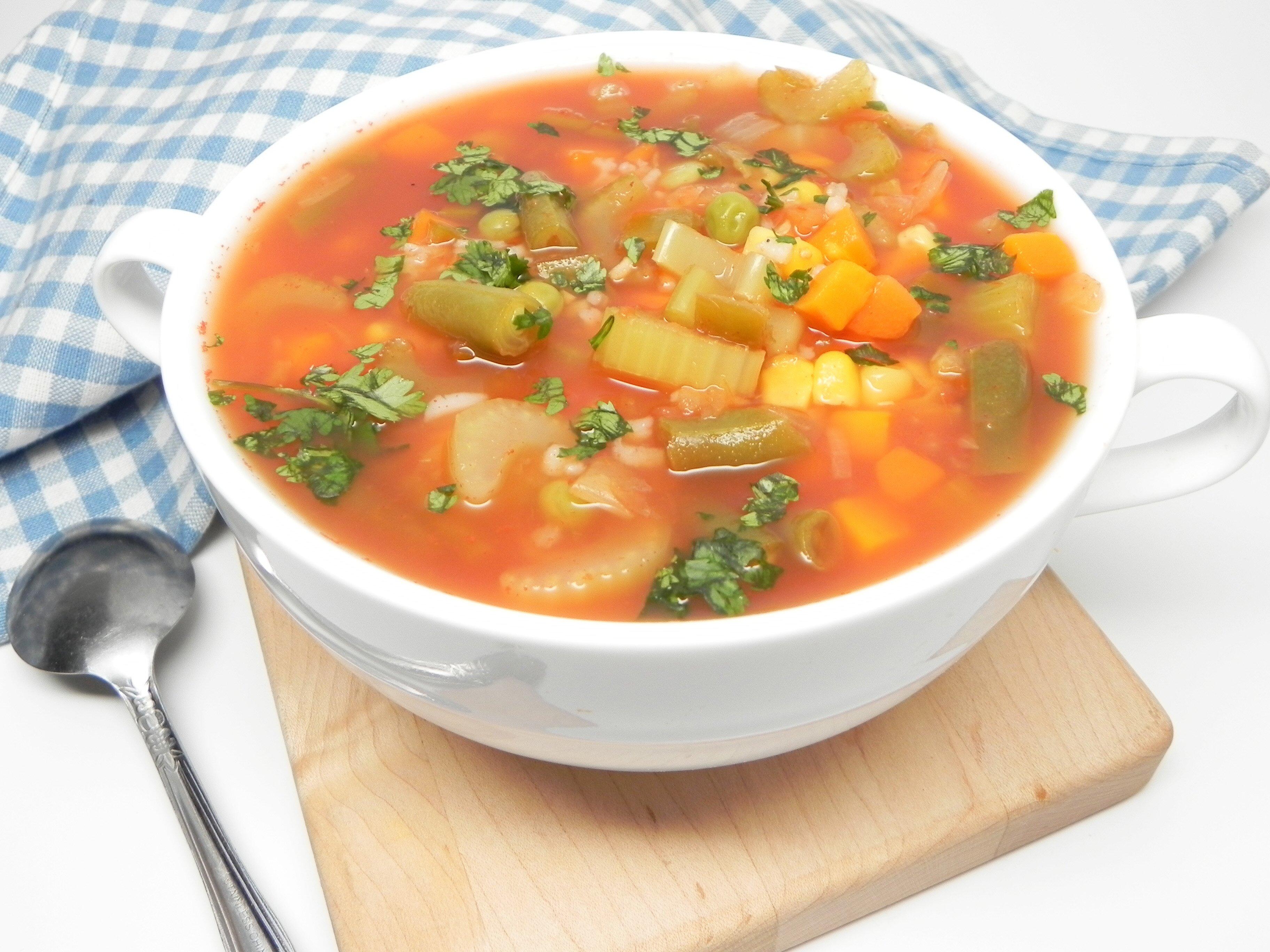 vegetable salsa soup recipe