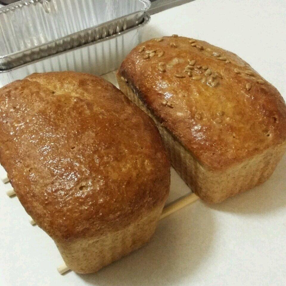 easy 100 whole wheat bread recipe