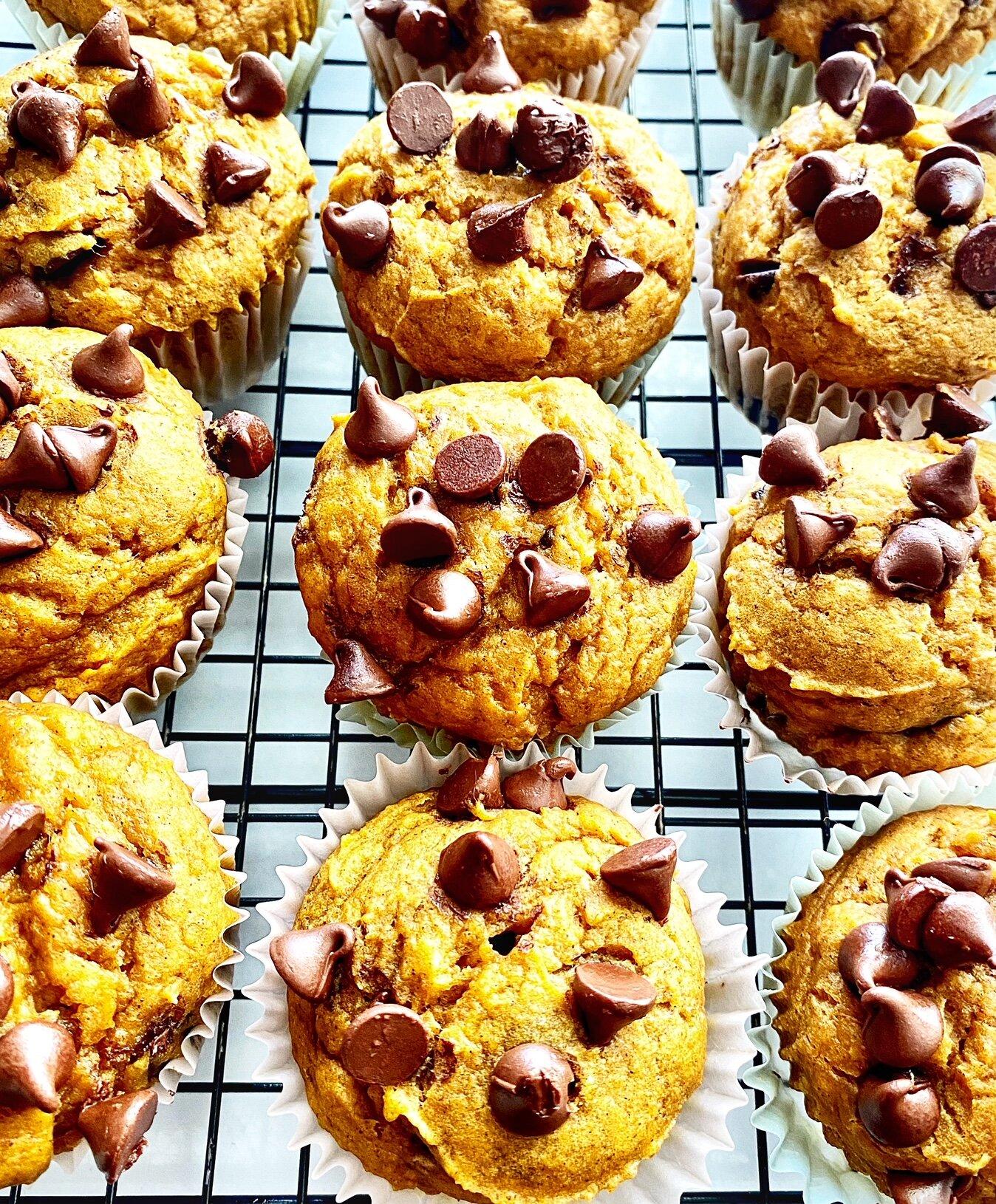 light pumpkin chocolate chip muffins recipe