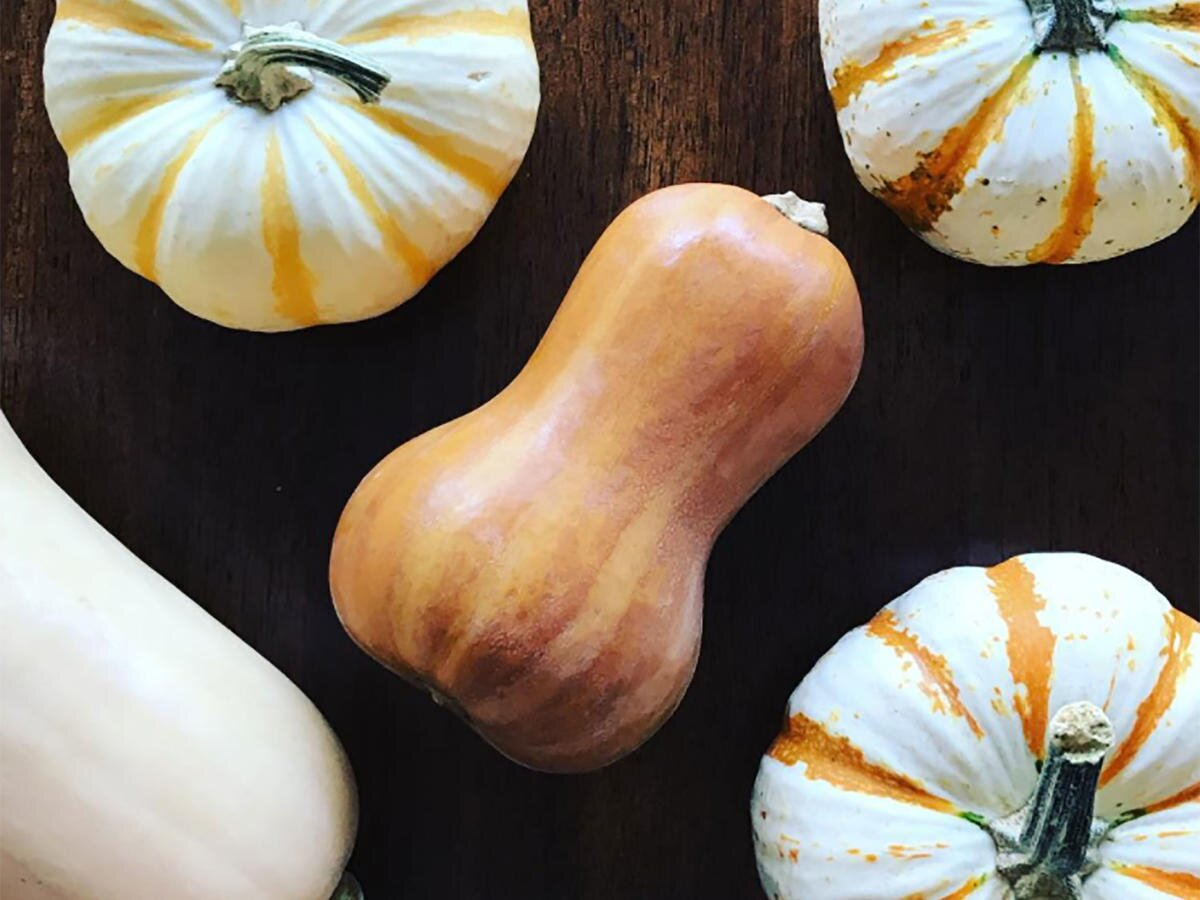 Yes, Toxic Squash Syndrome Is a Thing
