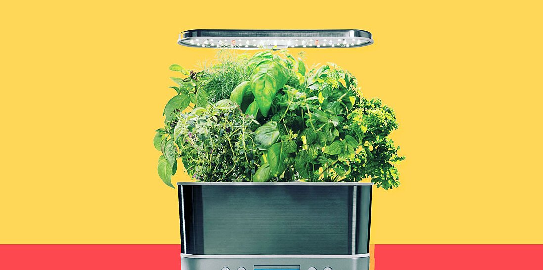 this smart indoor garden is a winter lifesaver mdash and its half off