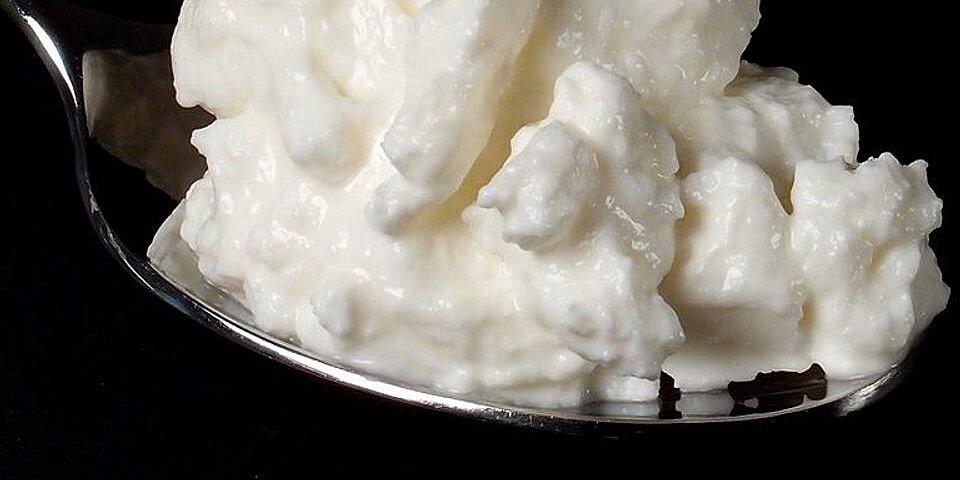 quark homemade cheese recipe
