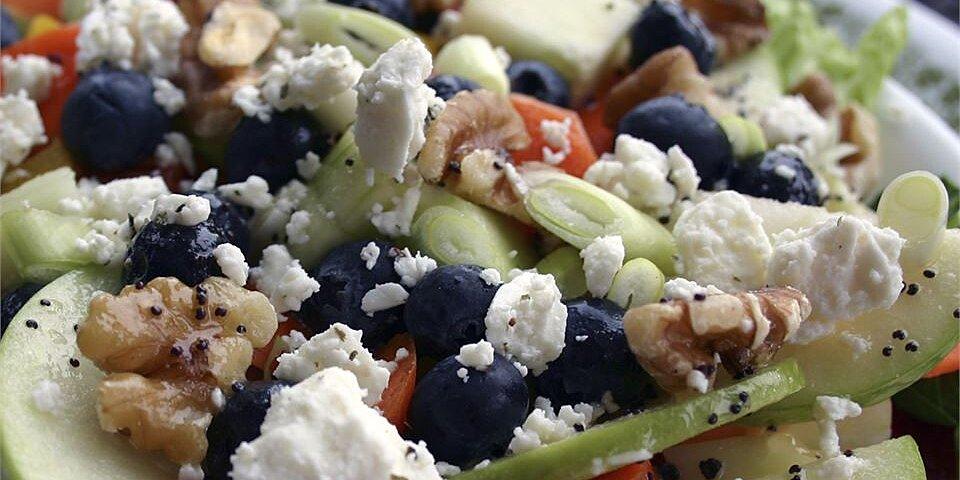 back to rainbow salad with lemon poppyseed dressing recipe