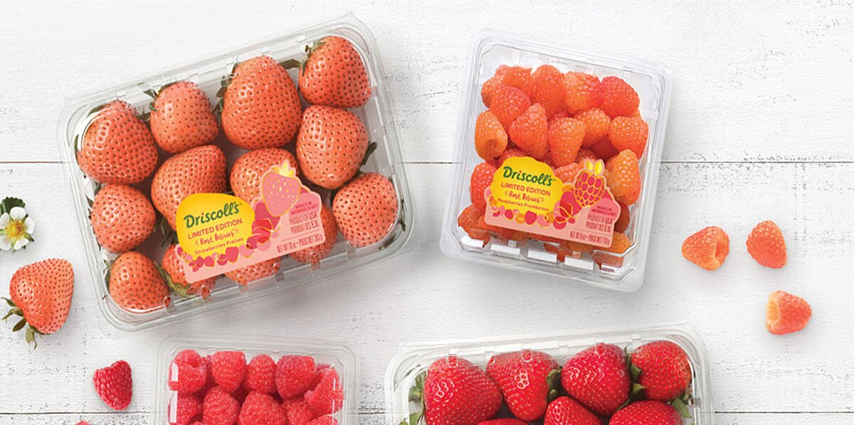 drop everything rose strawberries and raspberries just arrived in