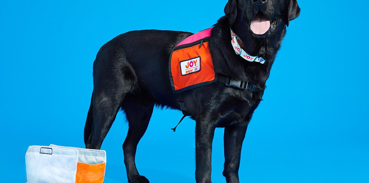 The Proceeds From These New Dunkin' Dog Toys Go to a Good Cause