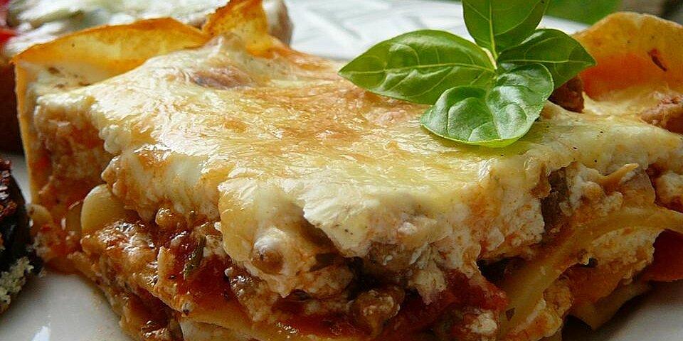grandmas best ever sour cream lasagna recipe
