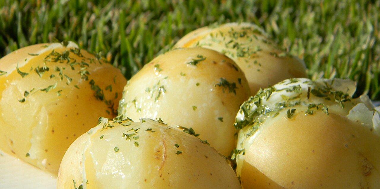 lengenbergs boiled potatoes recipe