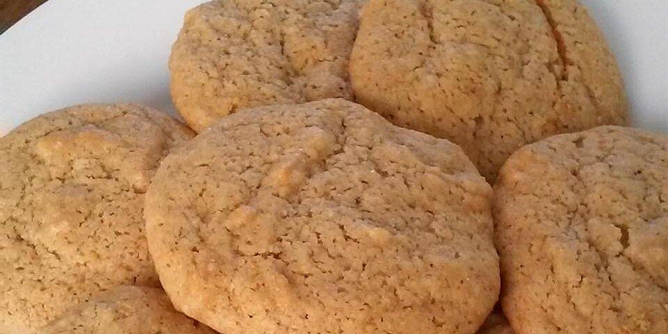 old german honey cookies recipe