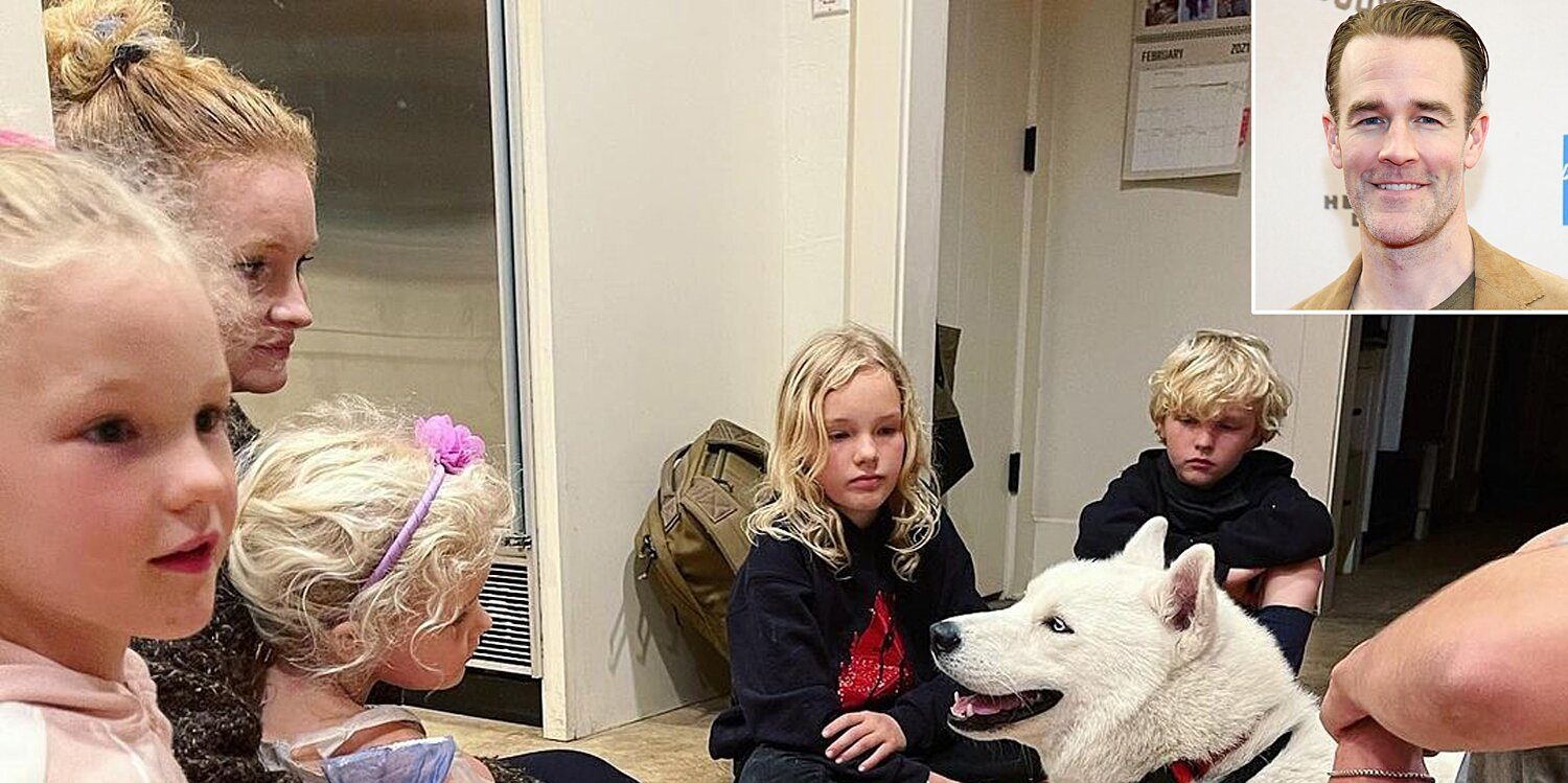 James Van Der Beek's Family Adopts Fifth Dog: 'Five Kids and Four Dogs Would've Been Too Easy'.jpg